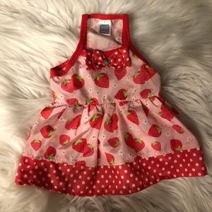Strawberry Dog Dress